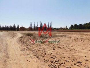 Terrain à vendre route de Fès Km 13 Marrakech