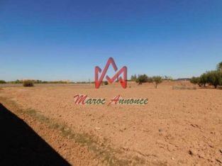 Terrain 1 hectare à vendre route de Fès km 14 Marrakech