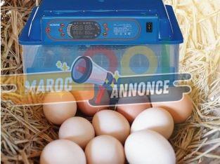 Mini Numérique incubateur 48 œufs