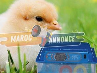 couveuse automatique intelligent 48 œufs
